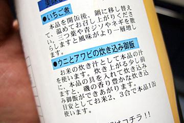 Ichigo11